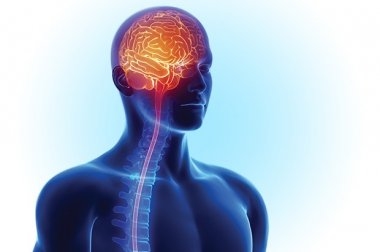 El centro cerebrovascular y de accidentes cerebrovasculares de Lakewood Ranch obtiene acreditaciones avanzadas