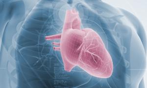 Manatee Memorial anuncia el primer implante de válvula cardíaca recuperable