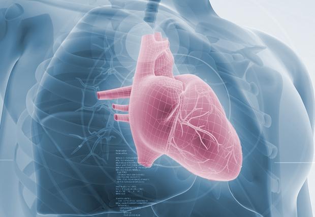 Manatee Memorial Announces First Implant of Recapturable Heart Valve